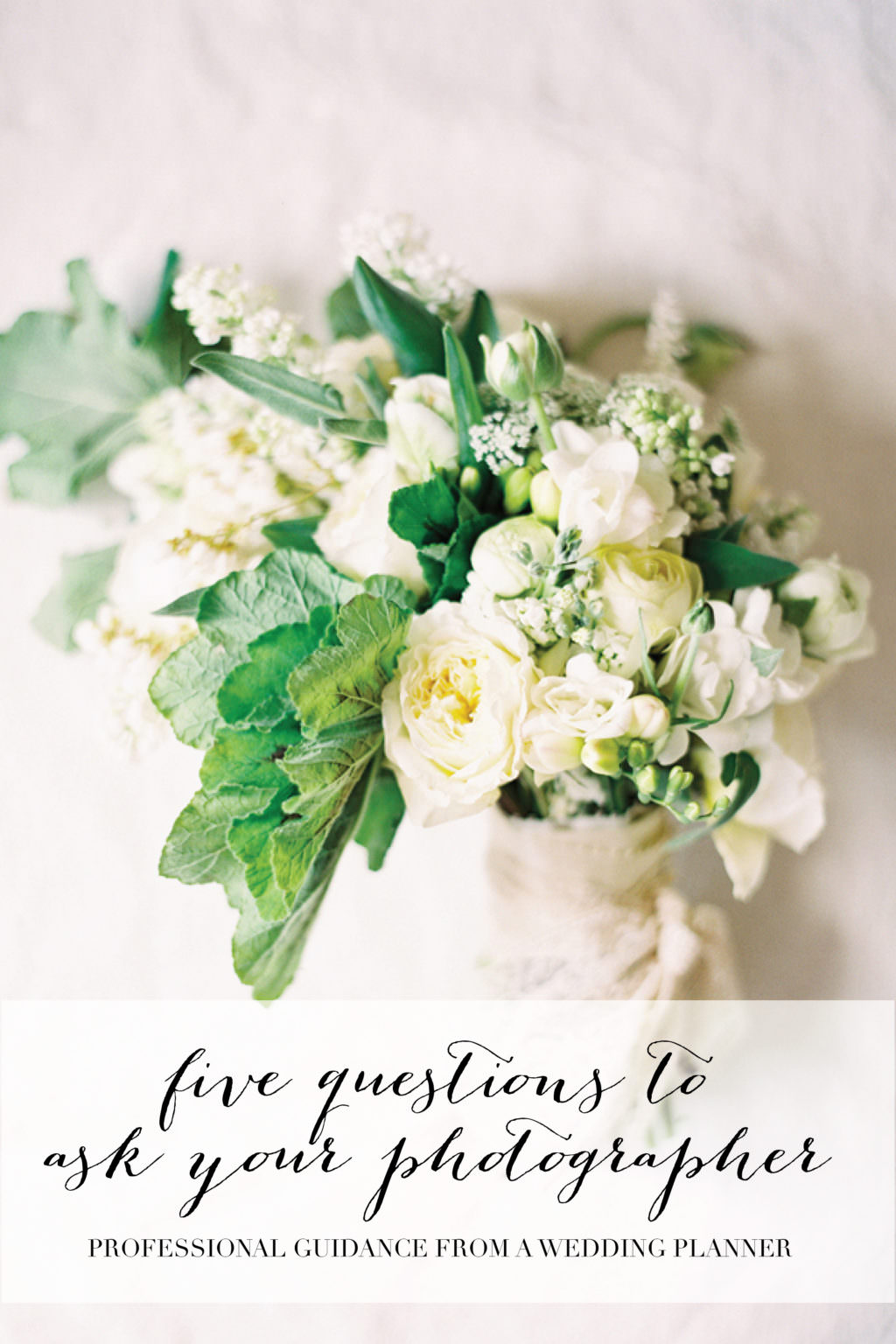 Top questions to ask your wedding photographer and the ultimate top questions to ask your wedding photographer wedding shot list guide junglespirit Choice Image