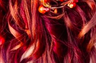 Dina Sevajian-bridal-fall-hair-design