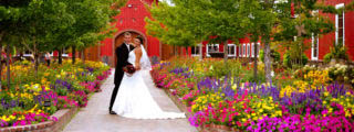 the-venue-at-crooked-willow-farms