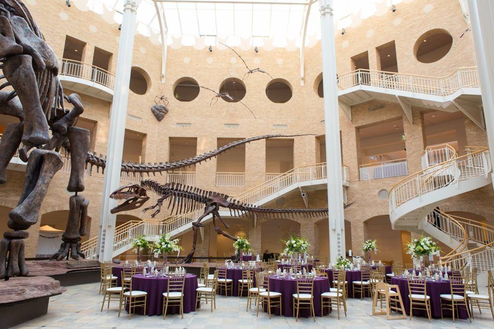 Chancey Charm Atlanta Wedding Venue Interview | Fernbank Museum ...