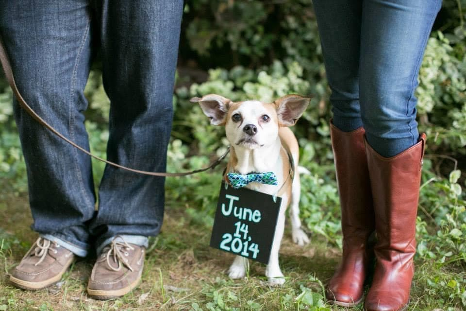 """We're diving into a list of our very favorite engagement announcement ideas, and hope you'll find one that says """"we're tying the knot!"""" in a way that represents the two of you best! #engagementannoucements #sayingido"""